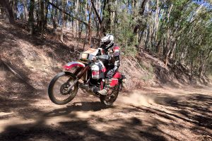 Tenere Tragics celebrate legendary Yamaha model with annual ride